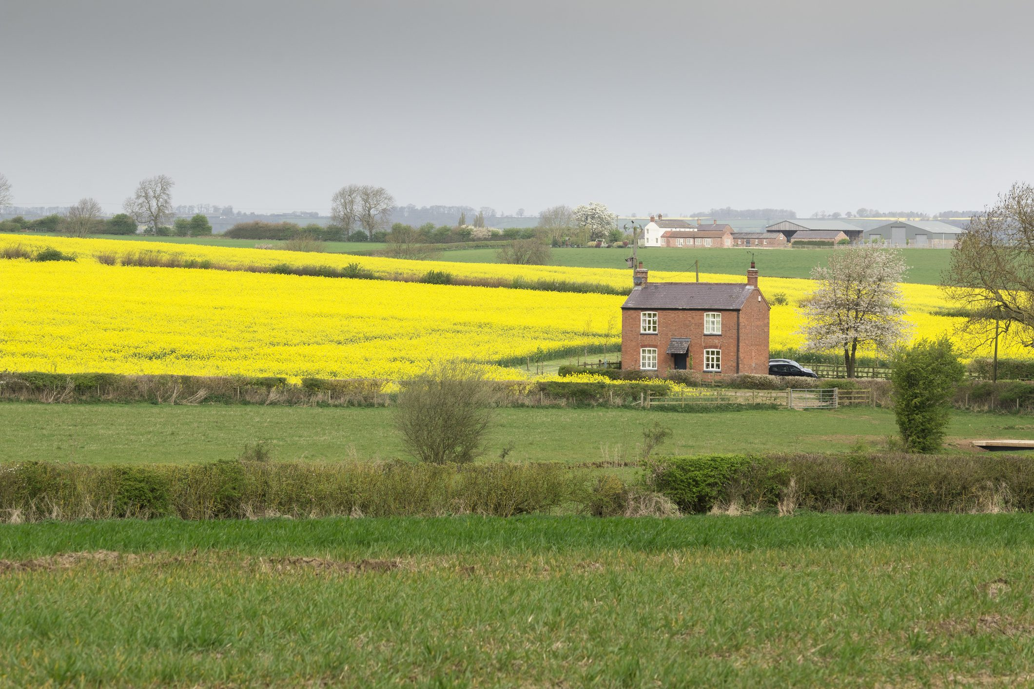 Holiday cottage in idyllic countryside setting